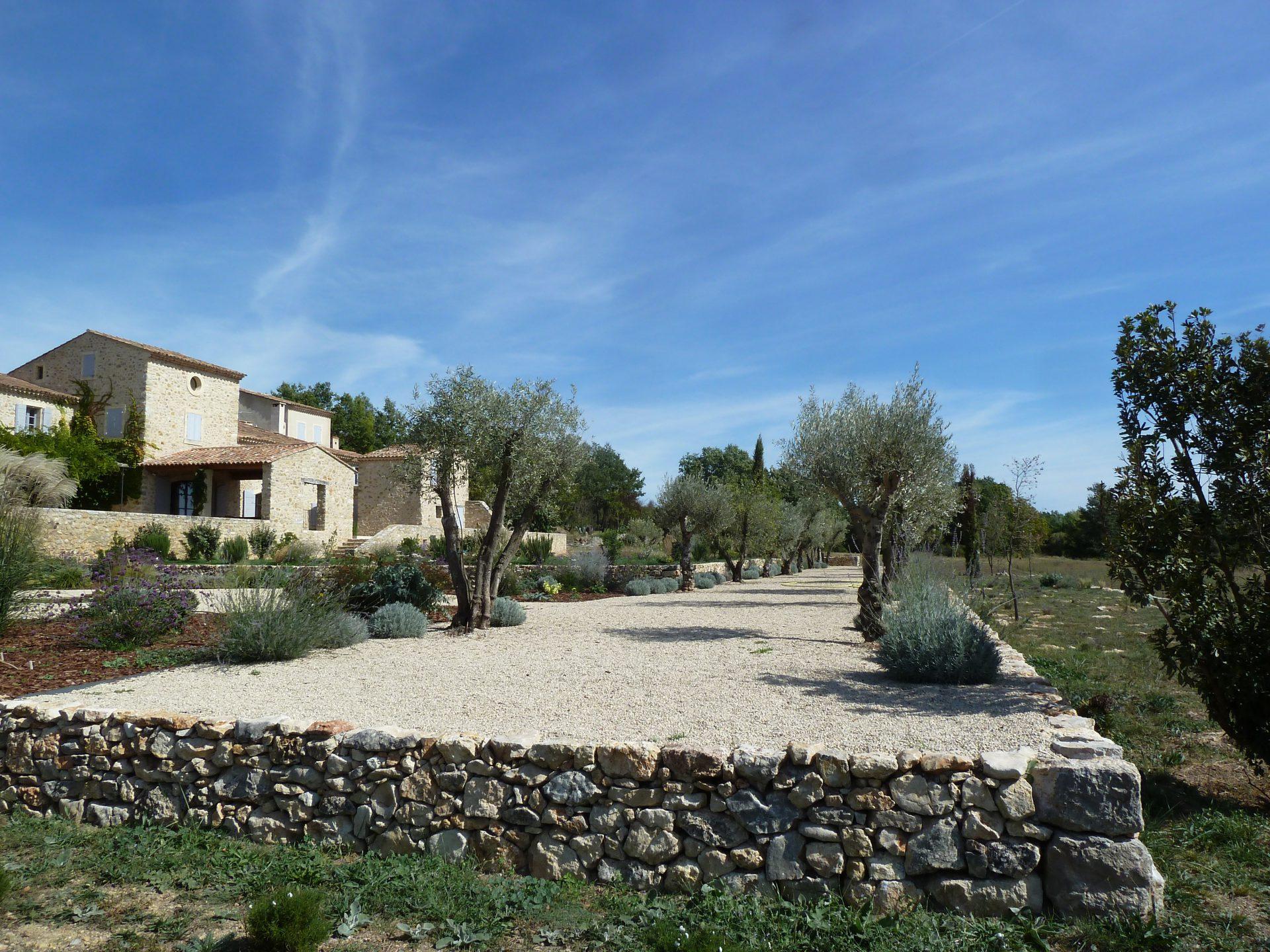 Jardin privé en Provence L'allée des oliviers centenaires